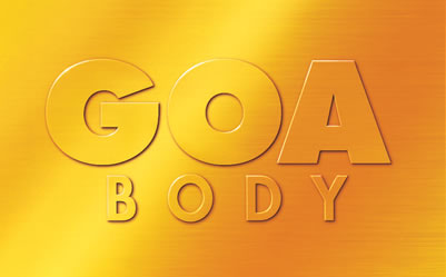 global outstanding assessment GOA Body of Toyota Hilux Vigo