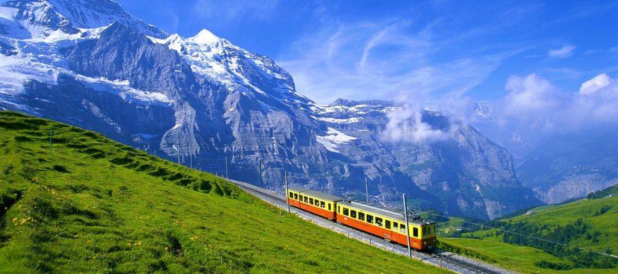 Dubai, Oman, Bahrain, United States, Canada and Europe Car Exporter Importer to Switzerland