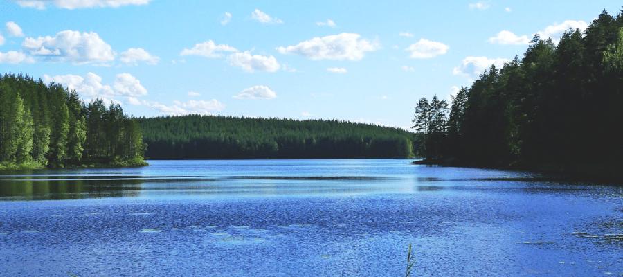 Dubai, Oman, Bahrain, United States, Canada and Europe Car Exporter Importer to Finland