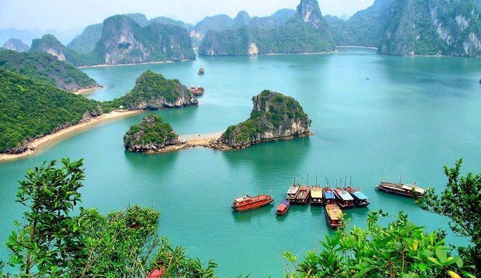 Dubai, Oman, Bahrain, United States, Canada and Europe Car Exporter Importer to Vietnam